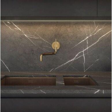 Omnires sieninis plautuvės maišytuvas, aukso spalvos 2